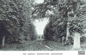 Bishopstone Postcard 153