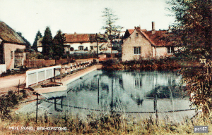 Bishopstone Postcard 157