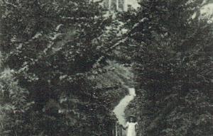 Bishopstone Postcard 159