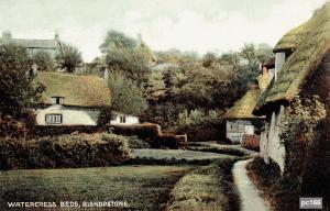 Bishopstone Postcard 166