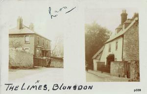 Blunsdon Postcard 339