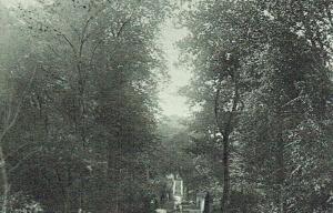 Buscot Postcard 234