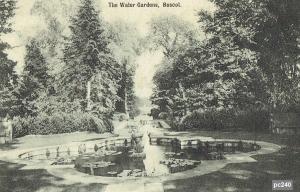 Buscot Postcard 240