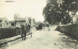 Coleshill Postcard 439