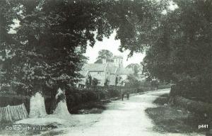Coleshill Postcard 441