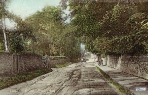 Faringdon Postcard 259