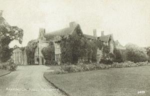 Hannington Postcard 429