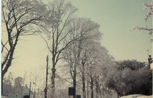 Highworth in the snow photograph 0869
