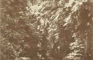 Shrivenham Postcard 425