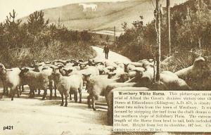 Westbury Postcard 421